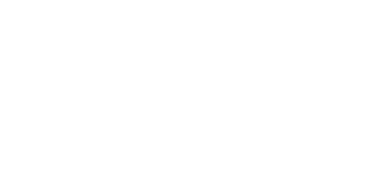 zvei_studios